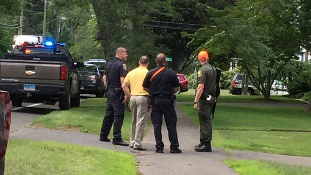 A bear was spotted on Main Street in Farmington on Monday morning. (WFSB)