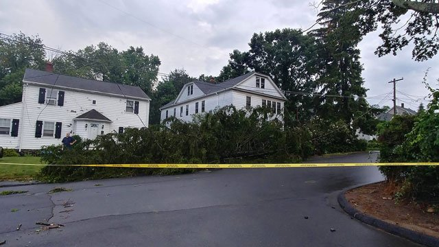 There was downed trees and wind damage in Waterbury. (WFSB)