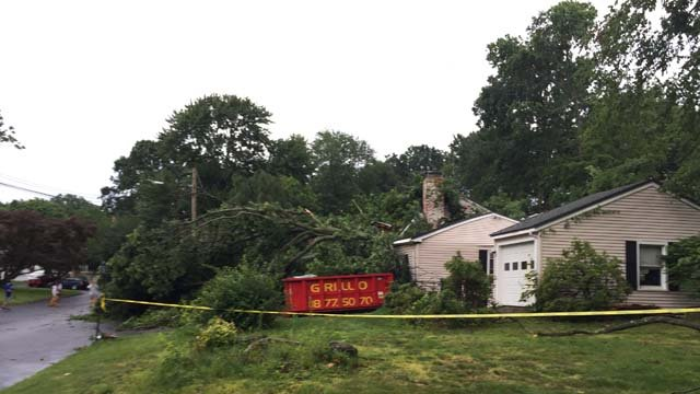 A tree crashed onto a home in Milford on Thursday (WFSB)