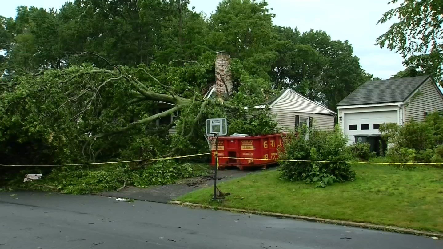 A tree came down onto the Crowley family's home in Milford on Thursday. (WFSB)