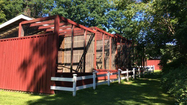 Aviary houses injured birds of prey