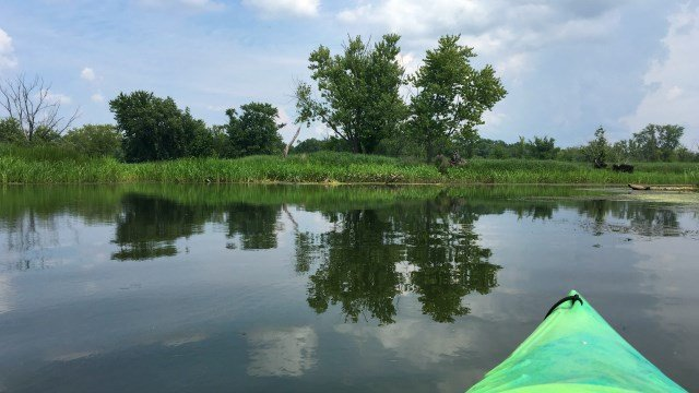 Kayaking past the Floating Meadows