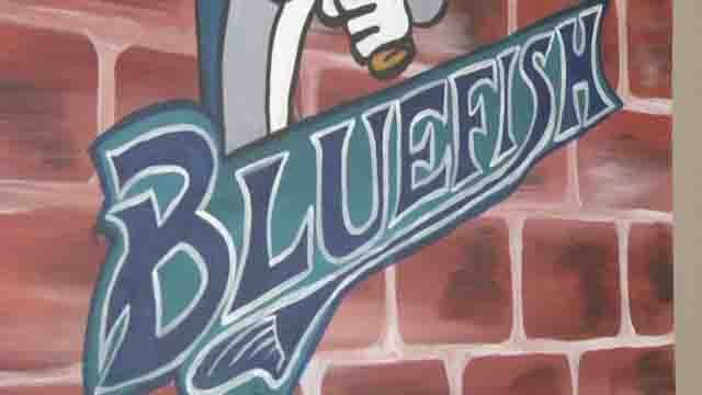 Bridgeport Bluefish will leave the city after this season (WFSB)