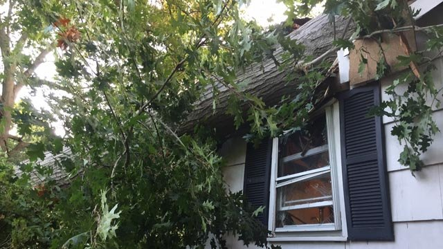A tree fell on a home in Fairfield and injured a woman. (Fairfield Fire Dept.)