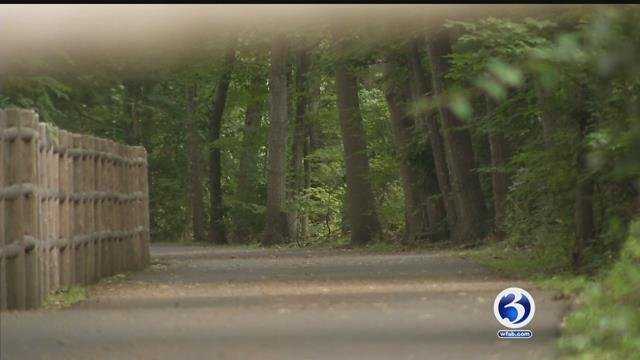 A man on a bicycle was following by a bear while riding on the Rails to Trails path in Farmington on Monday afternoon. (WFSB)