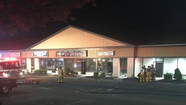 Vernon firefighters are on scene of a fire in a pet store (WFSB).
