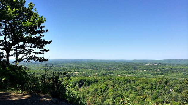 View from the top of the mountain at Penwood Forest