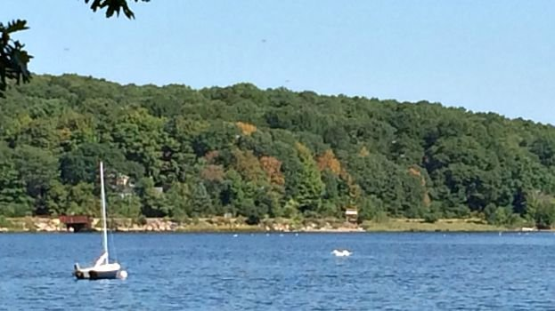 A look at the Thames River from Mamacoke Island