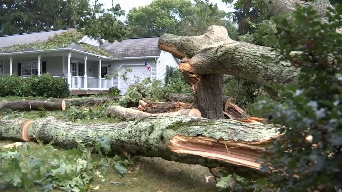 Storm damage in Waterford. (WFSB)