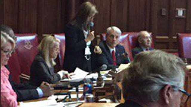 CT Senate Passes GOP Budget With Help From 3 Democratic Defectors