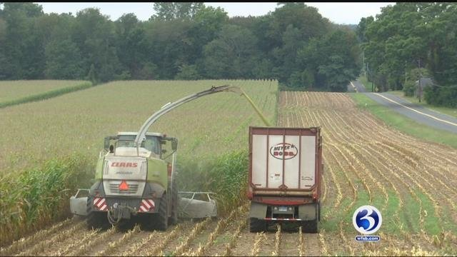Farmers are even preparing for what Jose is expected to bring (WFSB)