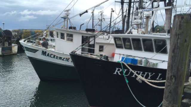 Offshore storm delivers deals st the fish market. (WFSB)