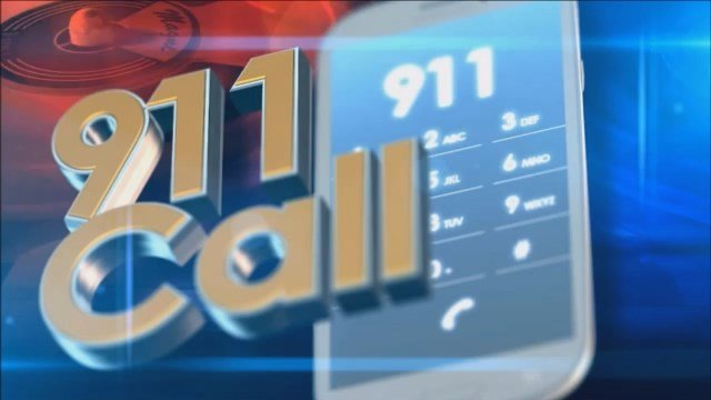 911 calls: Child attacked by dog in Manchester