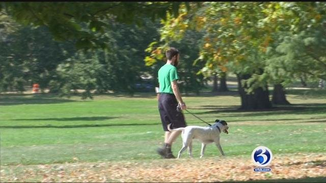 VIDEO: CT residents enjoying the summer-like weather