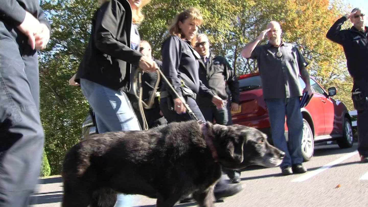 Lily the police K9 got a final salute on Thursday before being laid to rest (WFSB)