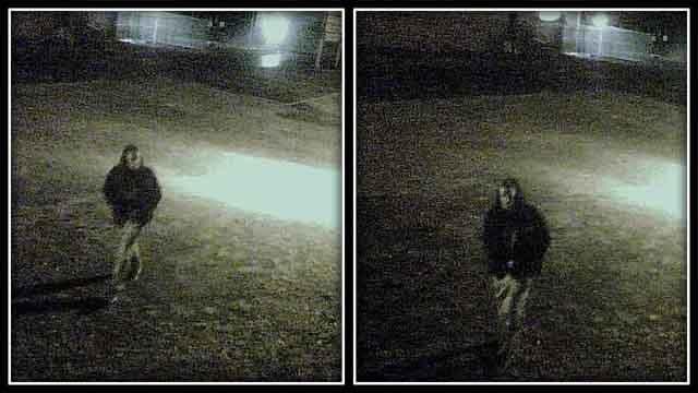 Surveillance images from Nutmeg Auto Service, Inc.