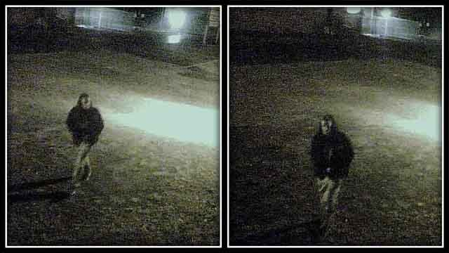 Surveillance images from Nutmeg Auto Service, Inc.