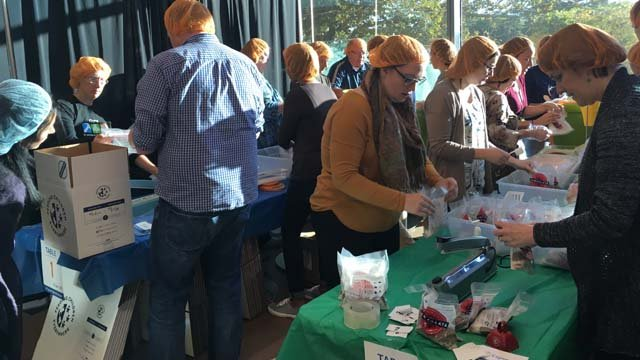 Cigna employees in Bloomfield worked to package meals for hurricane-ravaged Puerto Rico. (WFSB)