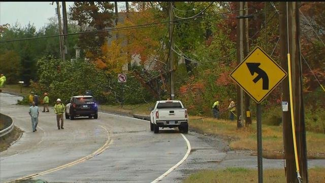 A tree fell onto some wires in Wolcott on Tuesday afternoon (WFSB)