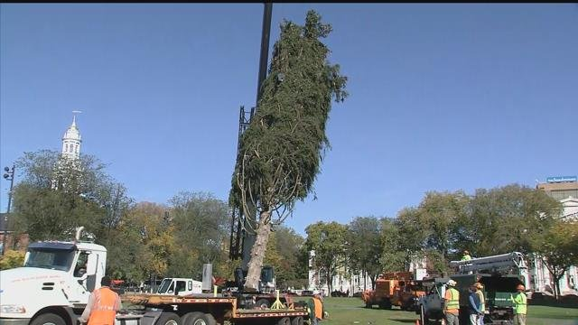 Now, the holiday tree is in place. Crews need to string up 30,000 lights on it.(WFSB)