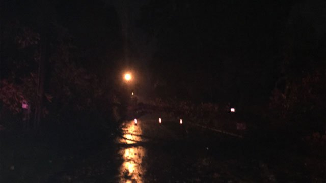 A tree was down in West Haven, likely due to weather conditions.