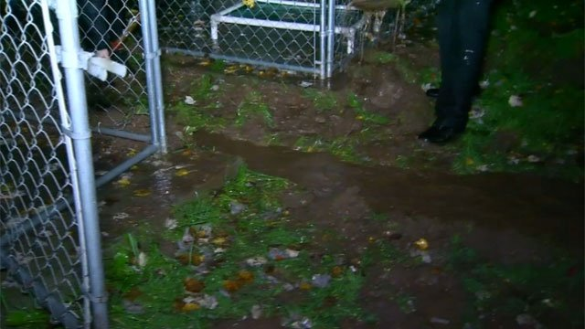 The volunteers at theMeriden Humane Society said they seem to have a handle on things now and should be done digging early Monday morning. (WFSB)