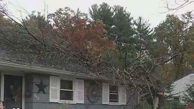 A fallen tree damaged a home in South Windsor. (WFSB)