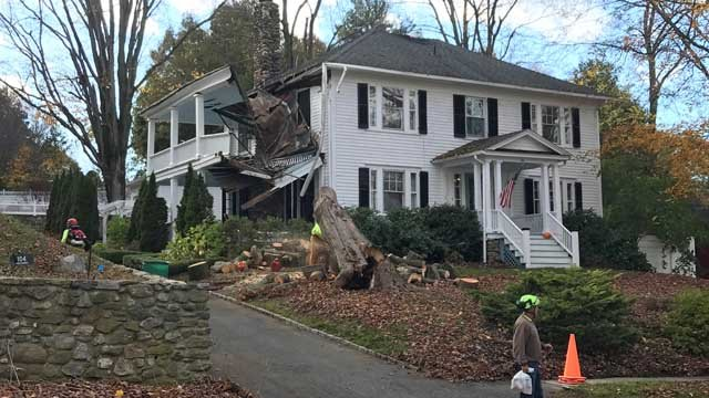 A tree fell on a home on Main Street in Watertown (WFSB)