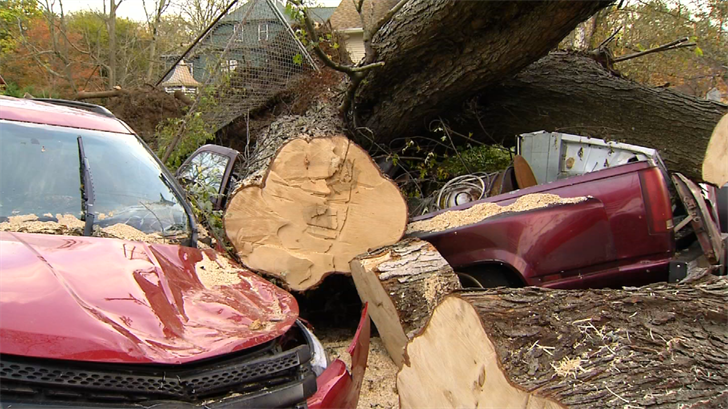 A large tree that fell during the late October storm is still on top of a few cars in the driveway of the Asylum Street home.  (WFSB)