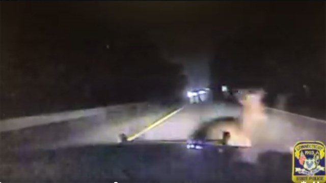 State police posted a video of a cruiser deer strike Thursday. (State police)