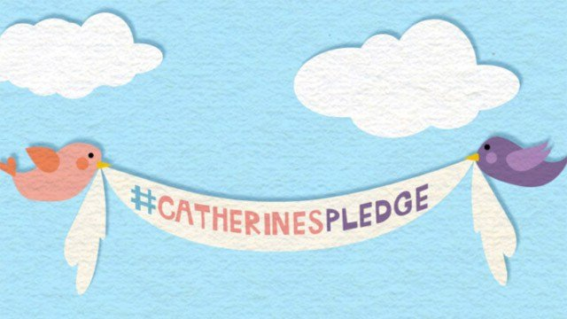 Catherine's Pledge of Kindness. (cvhfoundation.org)