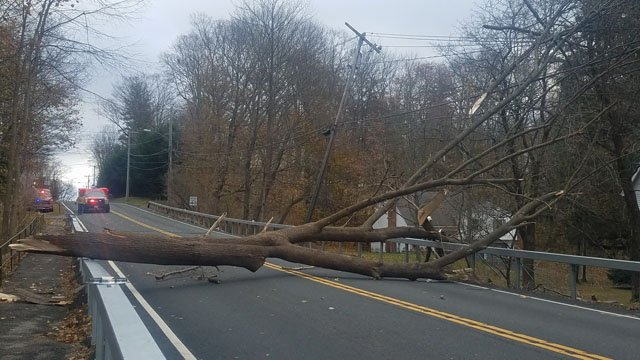 Wind was blamed for bringing a tree down on Route 44 in Norfolk. (Town of Norfolk, CT Emergency Management)