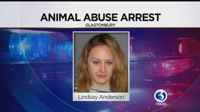 Lindsay Anderson was arrested for seriously injuring a small dog, according to Glastonbury police. (Glastonbury police)