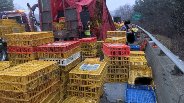Crews were removing the tractor-trailer, chickens, crates and fuel from the highway. (@CT_STATE_POLICE)