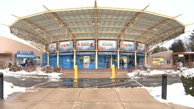 New program being offered at Mystic Aquarium (WFSB)