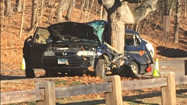 Wilcox Technical High School student was injured after a car into tree on Thursday morning. (WFSB)