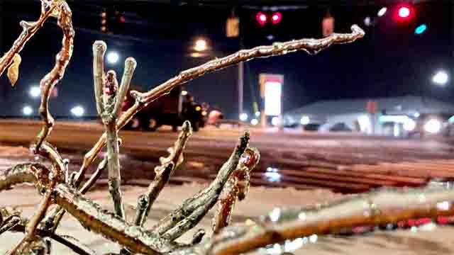 Tree branches were coated with ice on Wednesday night (WFSB)
