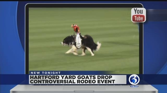 Video: Yard Goats cancel monkey rodeo show after complaints made