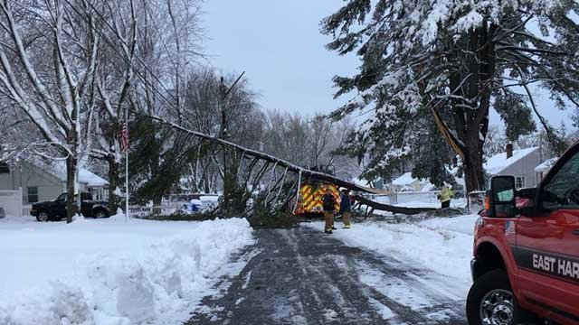 A tree brought down live wires onto a fire truck on Middle Drive in East Hartford Thursday morning. (WFSB)