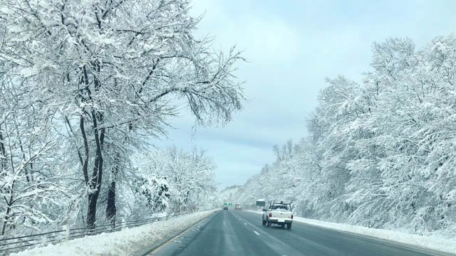 Winter Storm Elsa moved out overnight, leaving behind several inches of snow (Christina Behr)