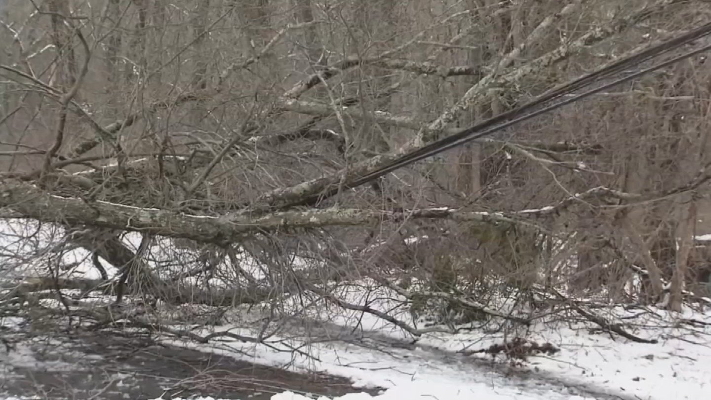 Nearly half of East Hampton remained without power on Friday after Winter Storm Elsa. (WFSB)