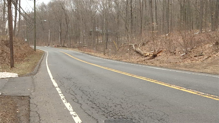 Route 10 reopens after emergency tree removal