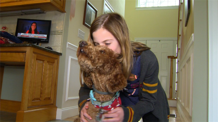 Southington dog reunited with family after missing for a month (WFSB)