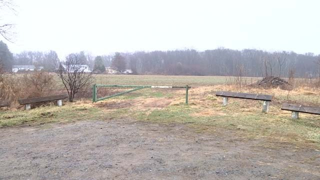 Human remains were found buried in a field in Bloomfield (WFSB)