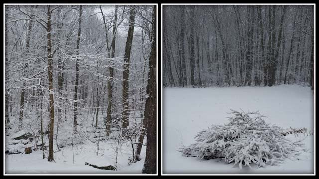 Spring snow in Tolland (iwitness)
