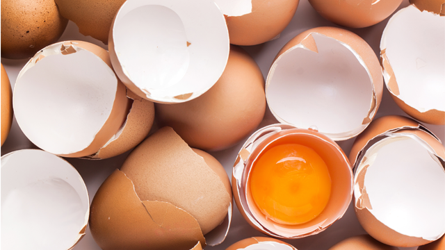 Million Eggs in Nine States Recalled Over Salmonella Fears