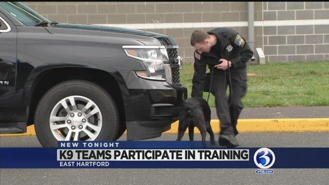 State Police K9 teams participate in training