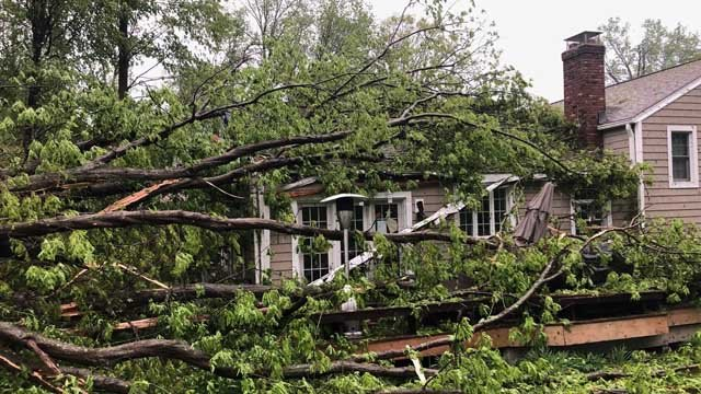 Trees came down on homes during Tuesday night's storms. (WFSB)