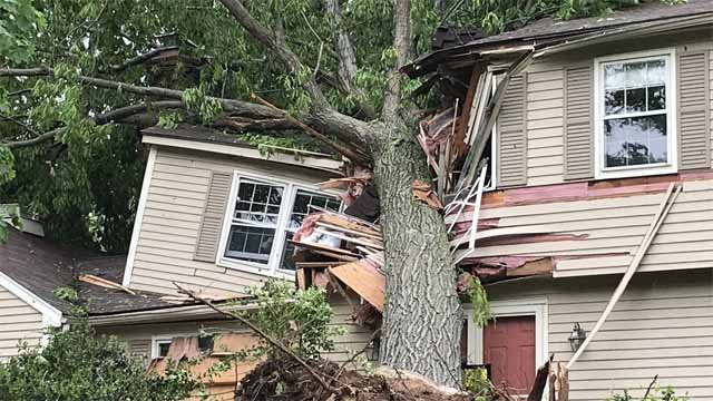 A tree fell onto a home in Cheshire during Tuesday's storms (WFSB)