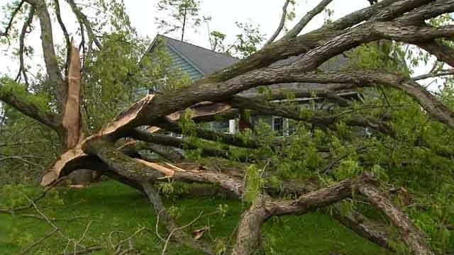 A macroburst caused severe damage in Brookfield on Tuesday night (WFSB)
